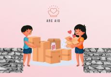Arc-aid-BML