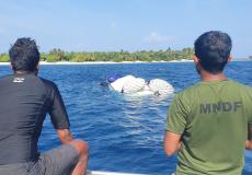 lounch-bandun-jehun-MNDF